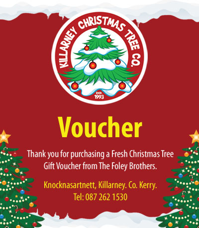 christmas tree voucher