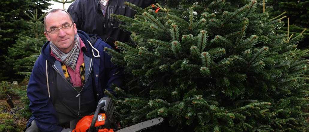 killarney-christmas